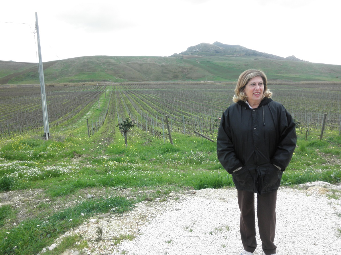 Farm-Sicily-2