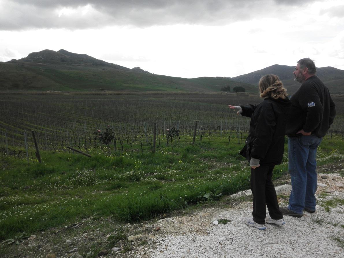 Farm-Sicily-3