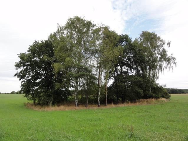 agroforestry-Gut-Krauscha